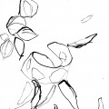 Au sud de nulle part #24, 2011. Indian ink on paper, 20,1 x 15,9 cm, 7 7/8 x 6 1/4 inches